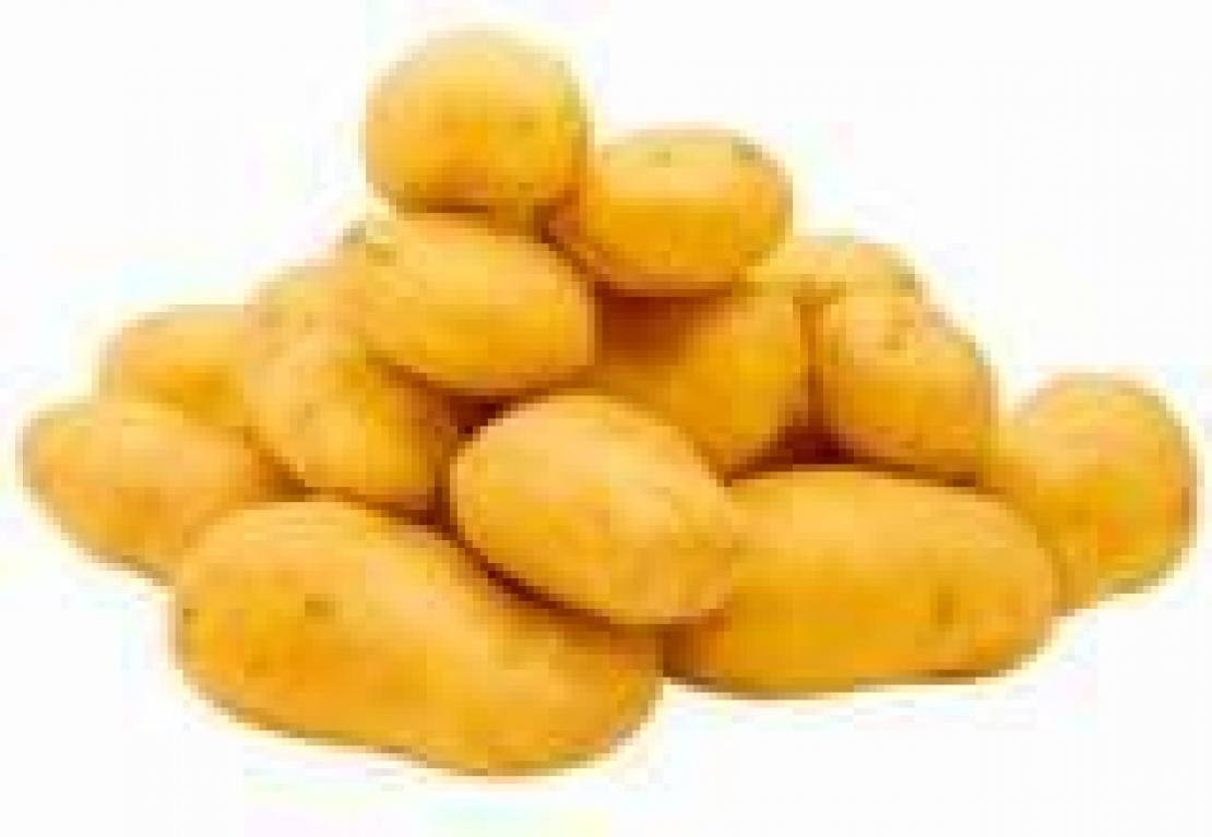 E la patata salvò il mondo