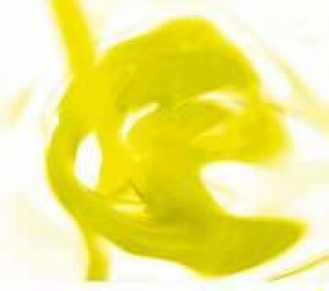 L'olivicoltura del nord Barese versa in gravi condizioni