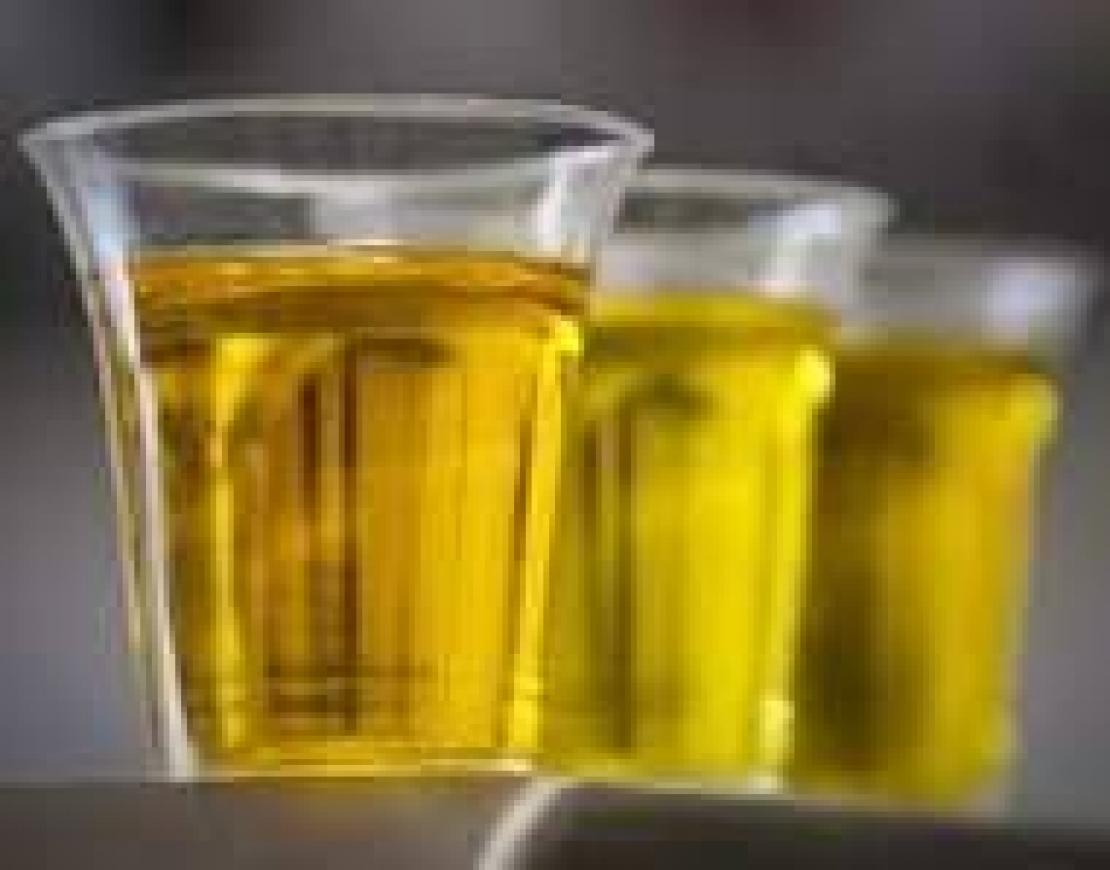 Basta chiacchiere, nasce il Comitato produttori olivicoli alchil esteri 75