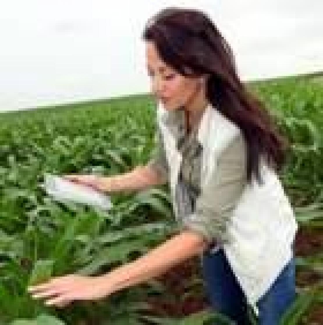 I giovani professionisti condannati alla povertà? La preoccupazione di un agronomo