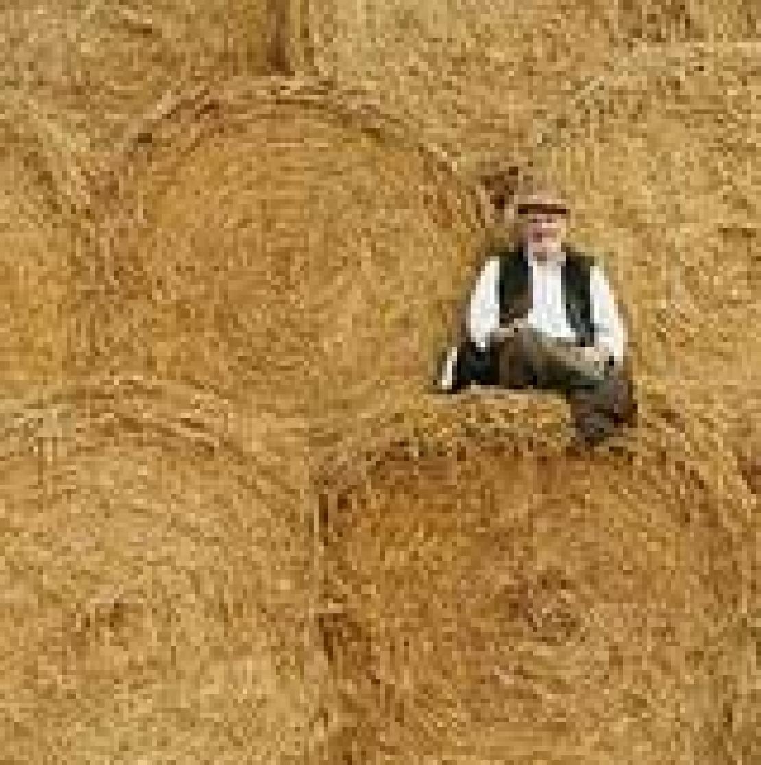 Il contadino come maestro