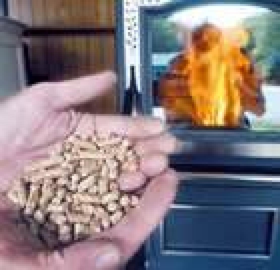 Con l 39 incentivo del governo la caldaia a pellet conviene for Caldaia a metano o pellet cosa conviene