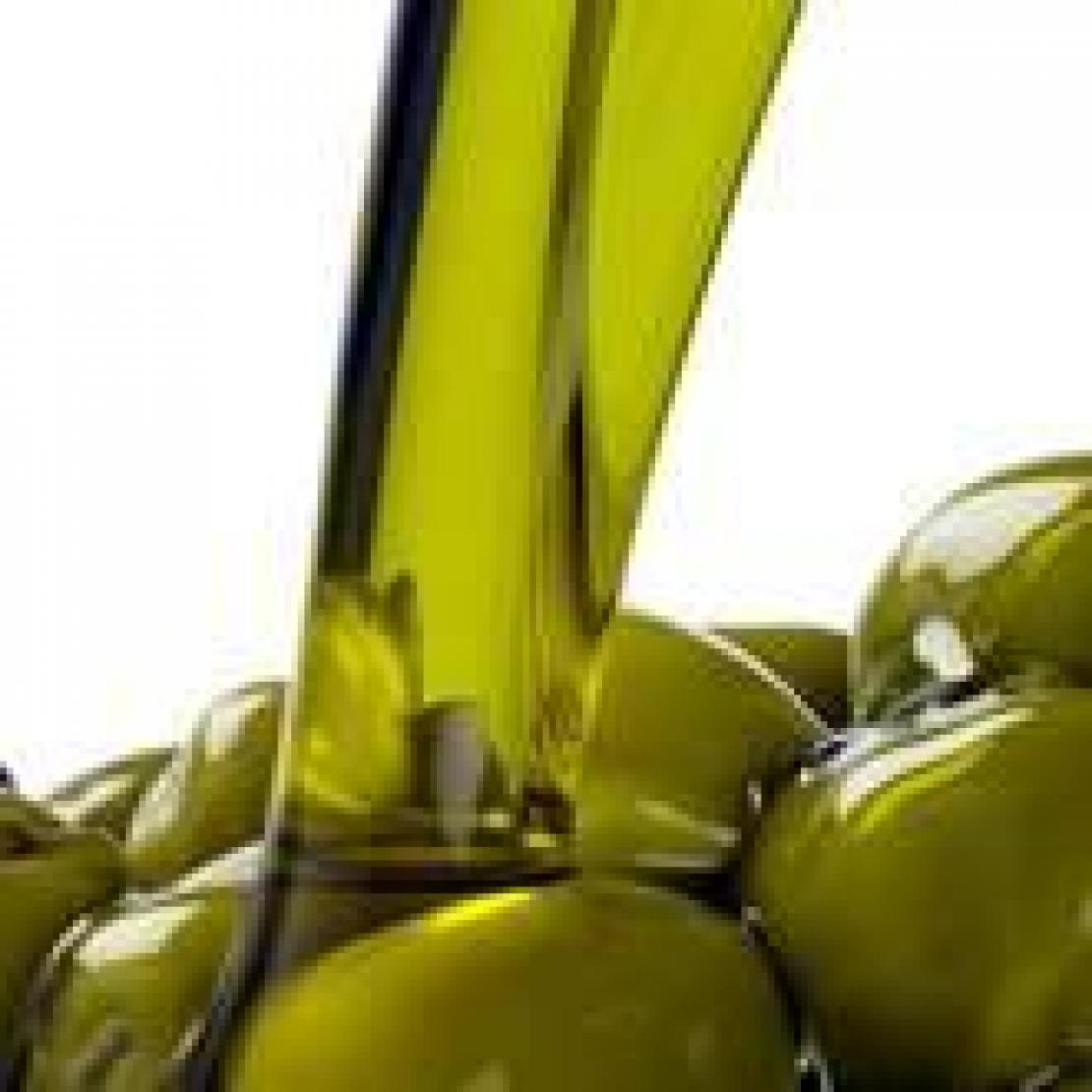 Produttività e rese. Quale di questi due fattori è più importante per garantire una giusta redditività all'olivicoltore?
