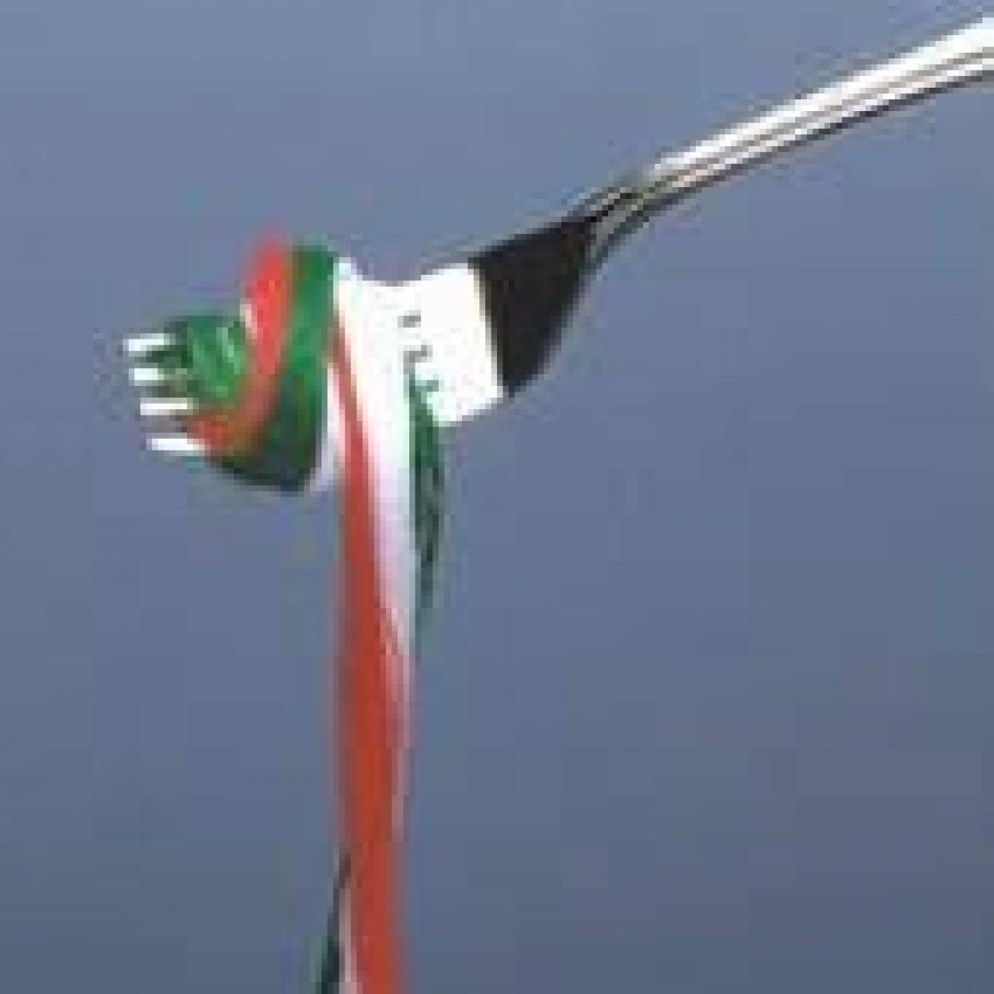 Le misure anticontraffazione sono una priorità per l'Italia. Con l'olio d'oliva stanno funzionando