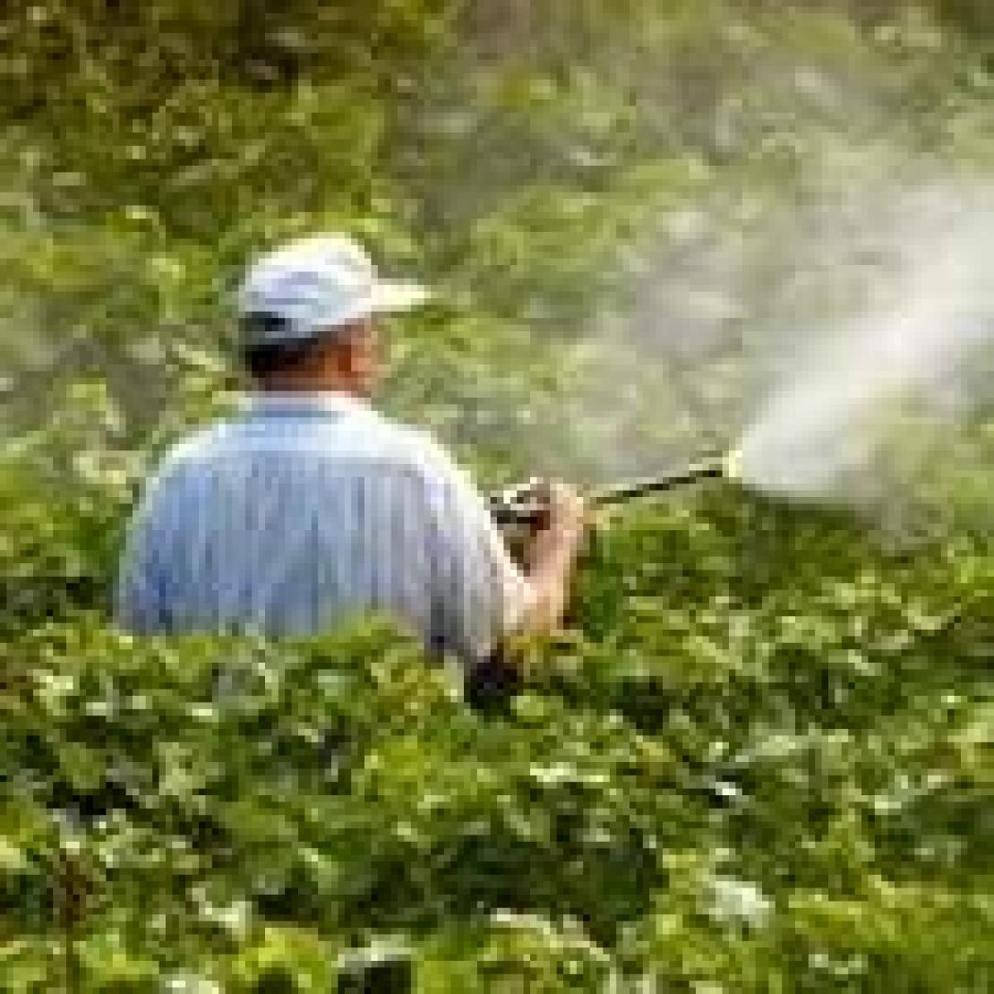 Dal 1 gennaio 2014 verranno messi al bando i fitofarmaci ad elevata tossicità?