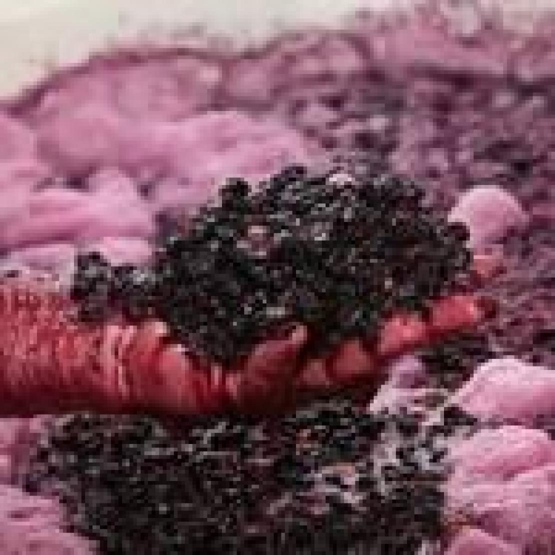Per ridurre l'anidride solforosa nel vino occorre tenere sotto controllo l'acetaldeide
