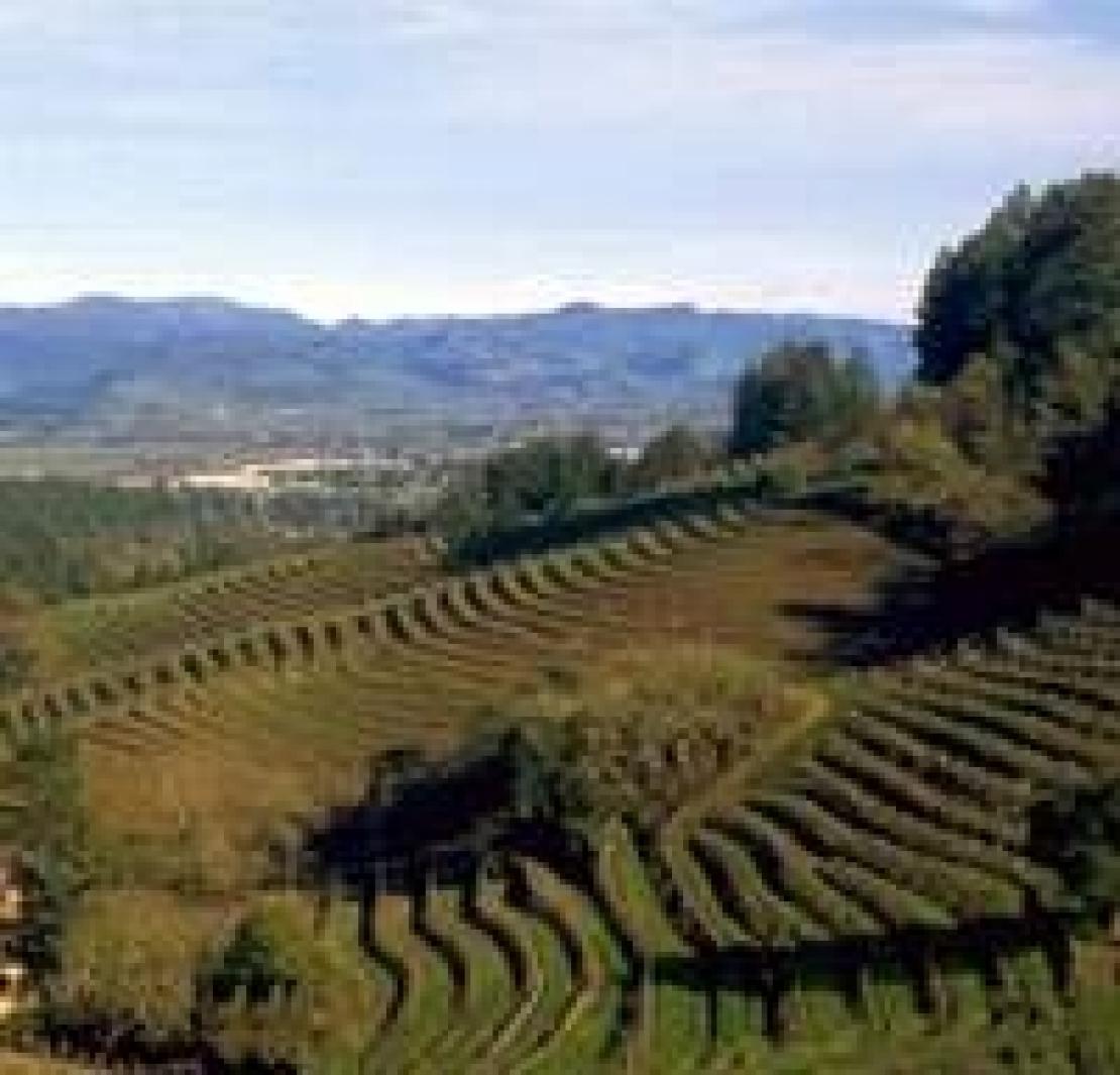 Bere un bicchiere di vino e andare all'inferno, solo in Valle d'Aosta è possibile