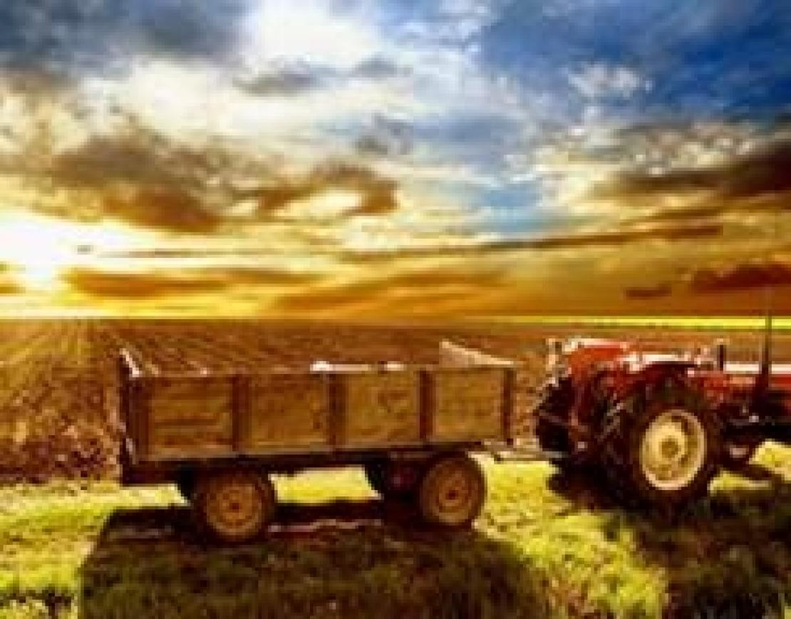 Dieci anni ai margini della politica e della società. L'agricoltura è la cenerentola dell'Italia