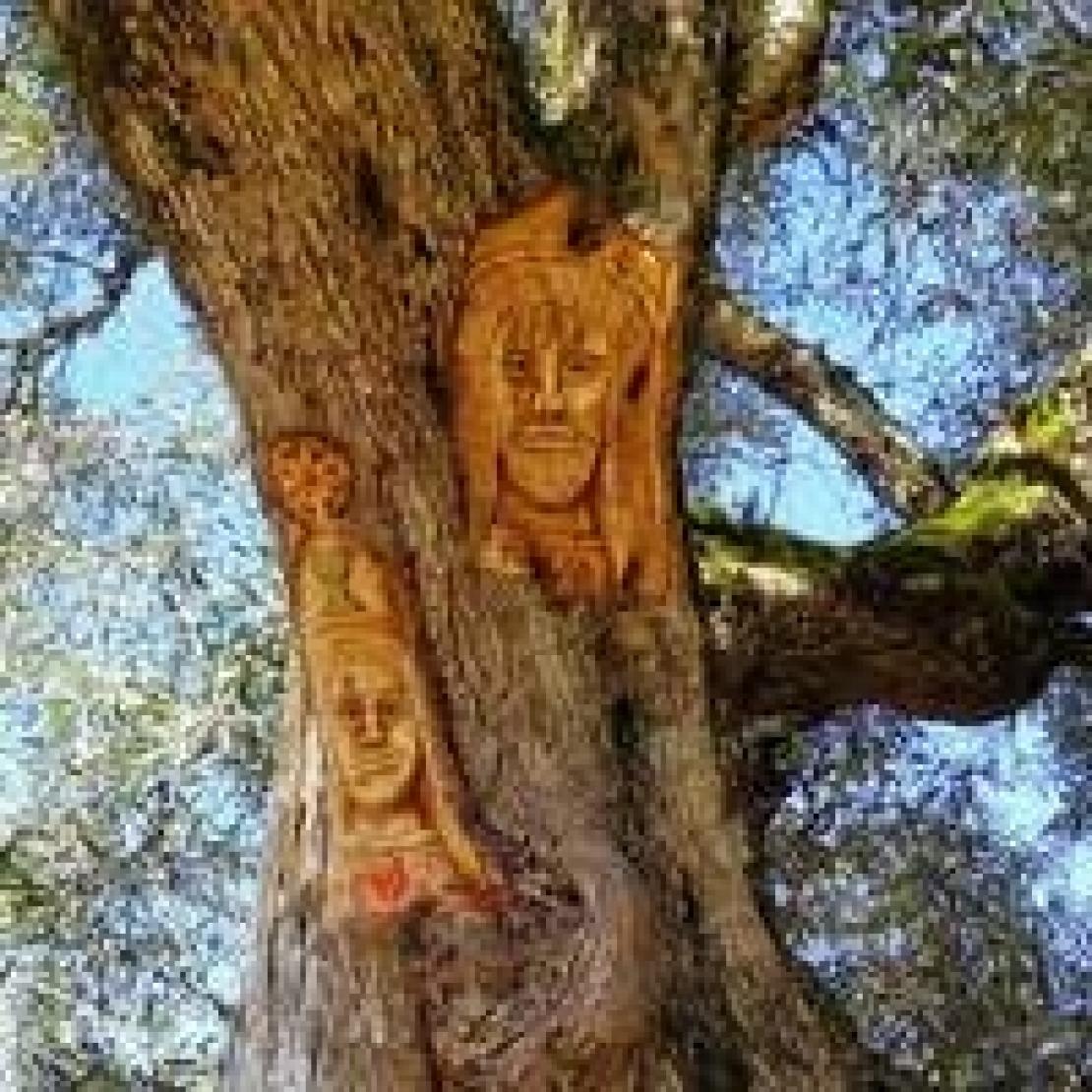 Un cammino culturale e spirituale in mezzo agli olivi