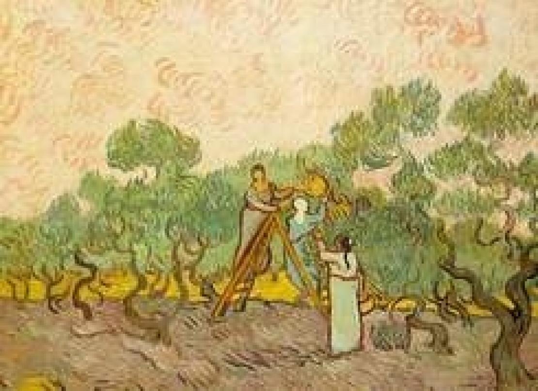 Da Vincent Van Gogh a Joseph Beuys. L'amore per l'olivo e l'olio d'oliva non ha età