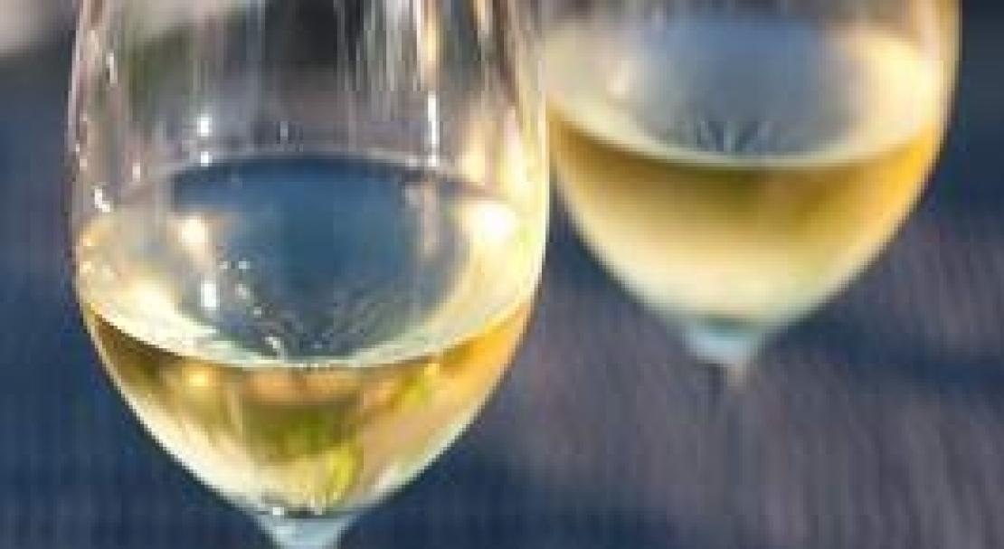La mineralità del vino, dalla suggestione alla percezione