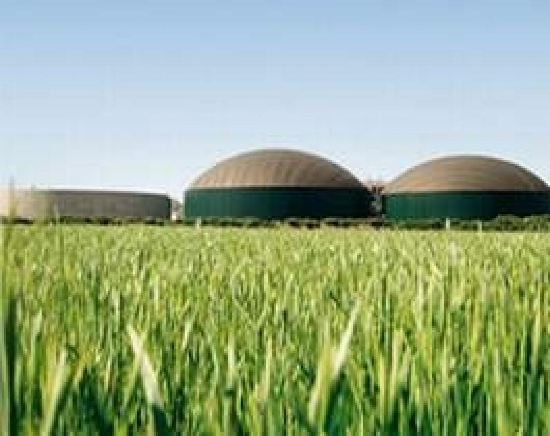 Italia leader mondiale nelle rinnovabili. Pronta la stangata sulle produzioni agro energetiche
