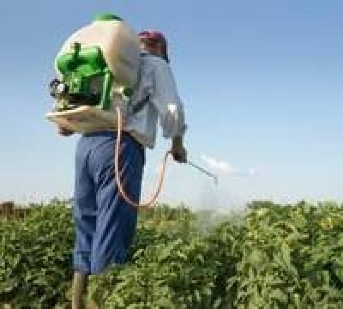 Niente più prodotti fitosanitari senza patentino