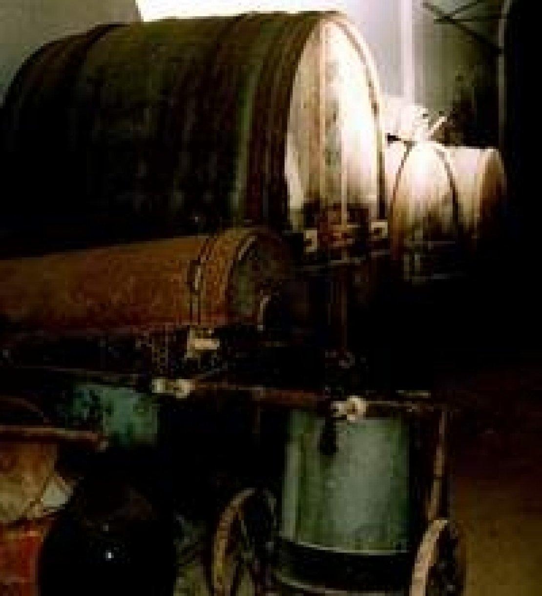 L'isola di Pianosa e il ritorno al vino, con l'intervento dei Frescobaldi