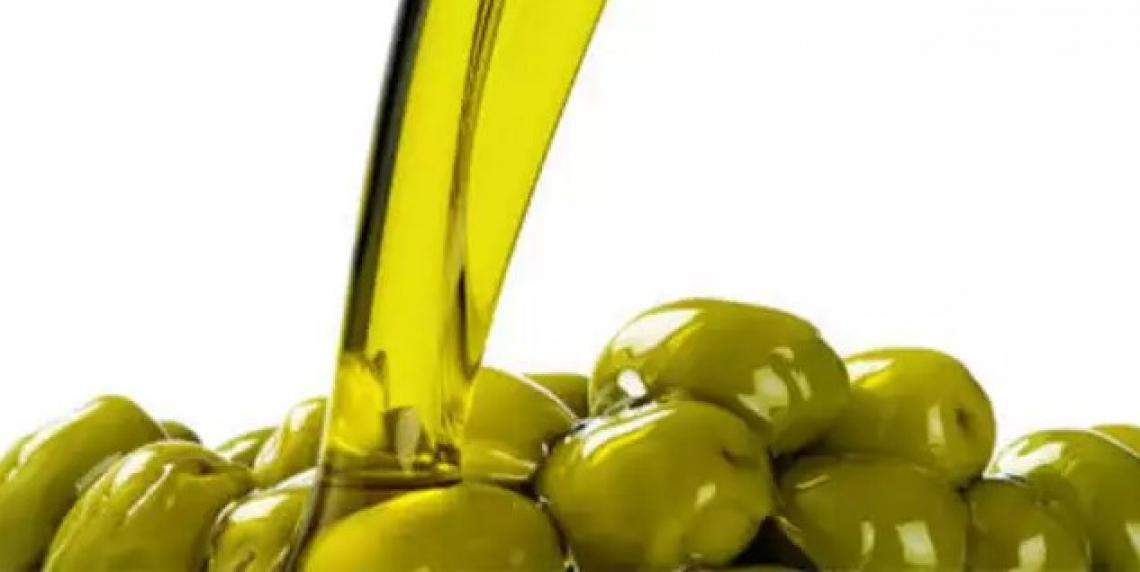 La produzione d'olio d'oliva si dimezza in Puglia