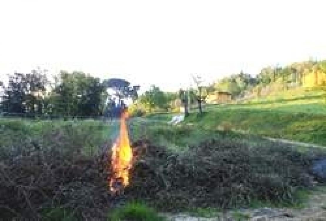Bruciare i residui di potatura è ancora reato, come confermato dalla Corte di Cassazione
