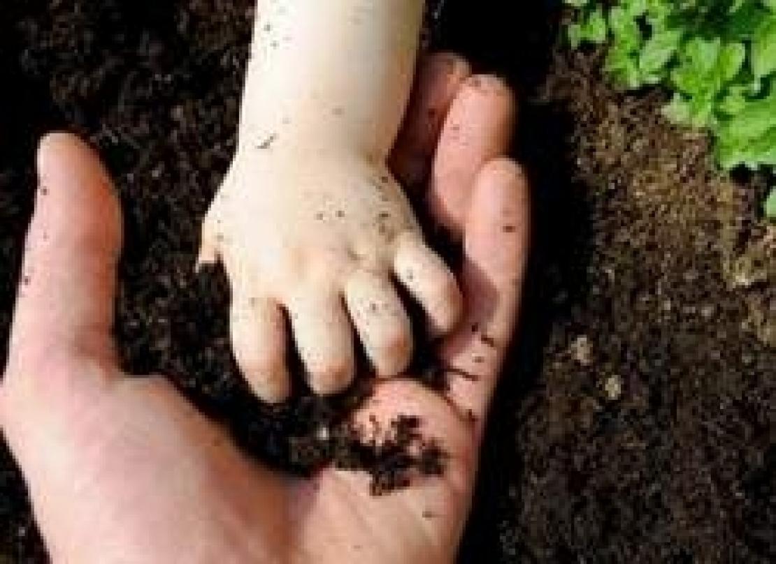 Un piano strategico per rafforzare la leadership italiana nell'agricoltura biologica