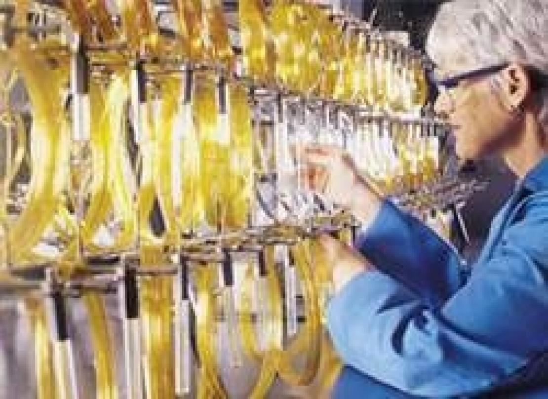 Le molte molecole responsabili dei difetti dell'olio extra vergine di oliva