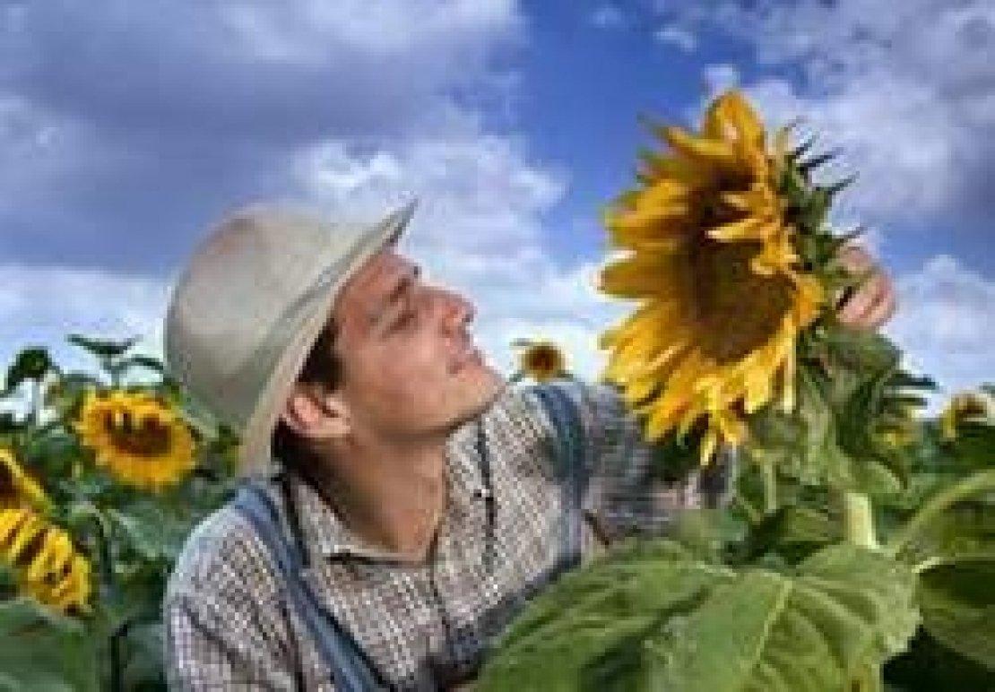 Agricoltura contadina e filiera a Km0, motore dell'Italia agricola?