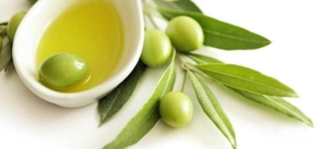 L'olivicoltura italiana del futuro alla prova del debutto
