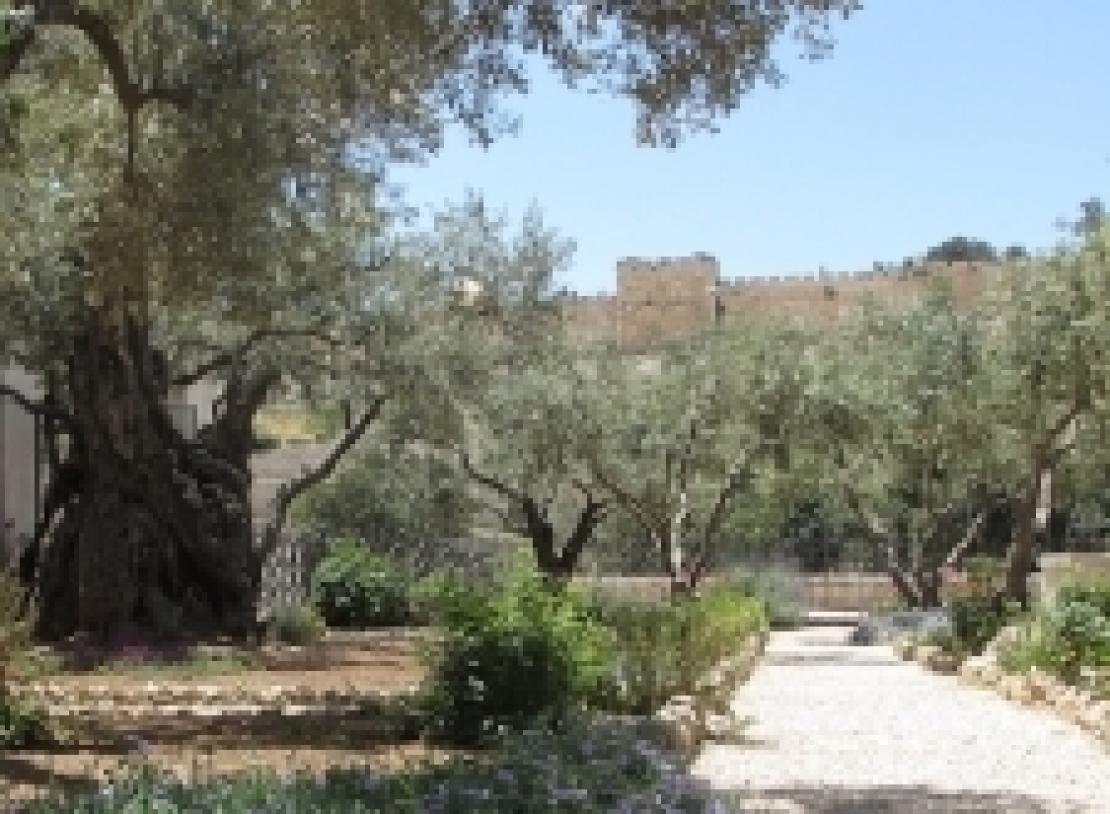 L'Orto degli ulivi e la Passione di Cristo: come l'arte racconta la fede