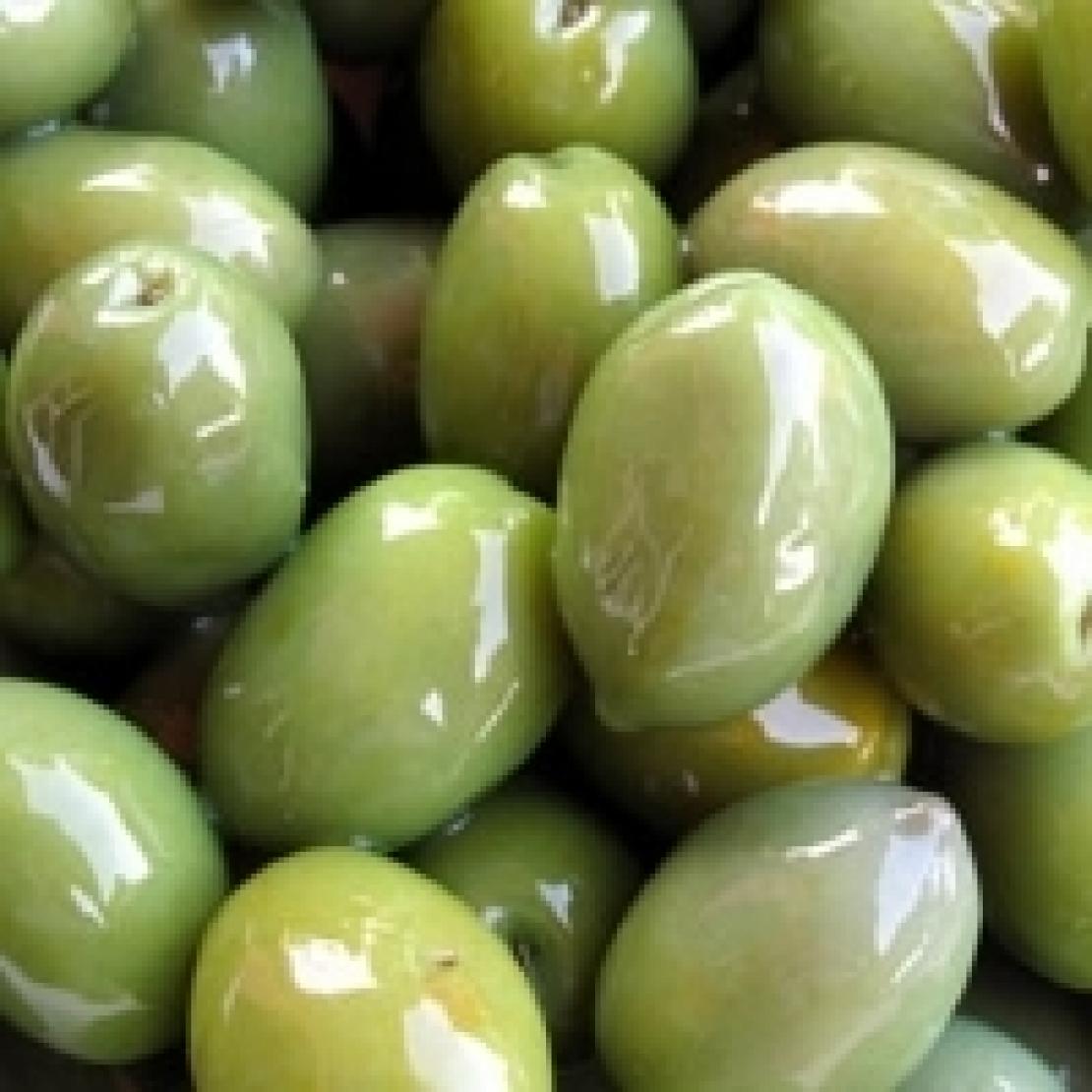 Nelle olive verdi un probiotico vegetale naturale, utile al nostro benessere