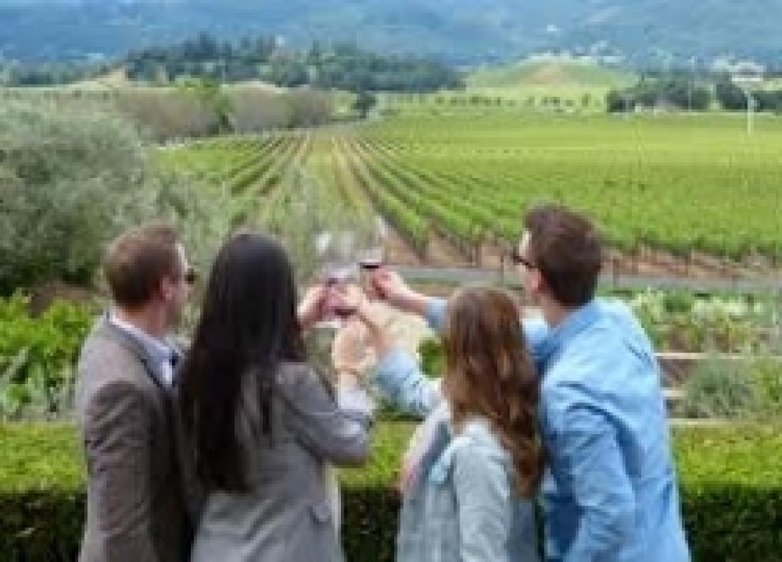 Legge sull'enoturismo: si parta dalle cantine e non dalle strade del vino