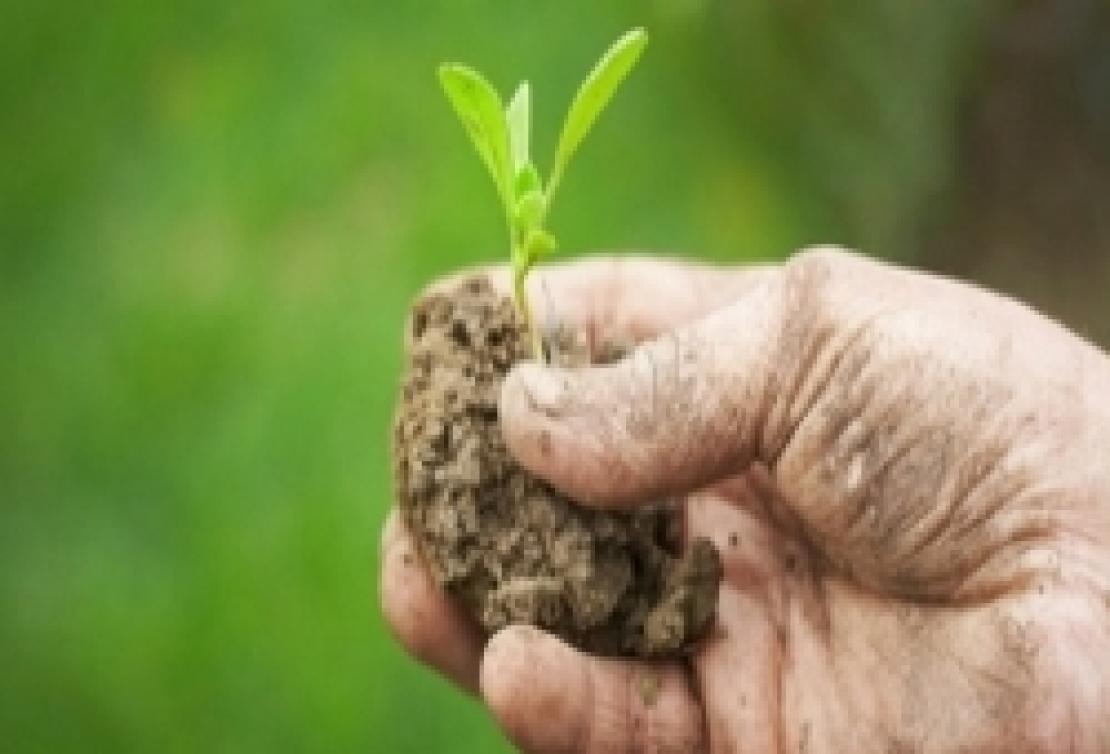 La politica agricola comunitaria fa il tagliando: accordo raggiunto sulla mini riforma