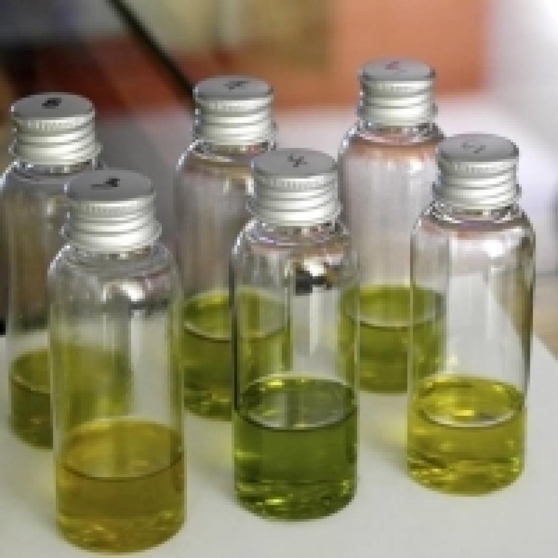 Tiriamo le somme sulla qualità dell'olio in questa campagna olearia