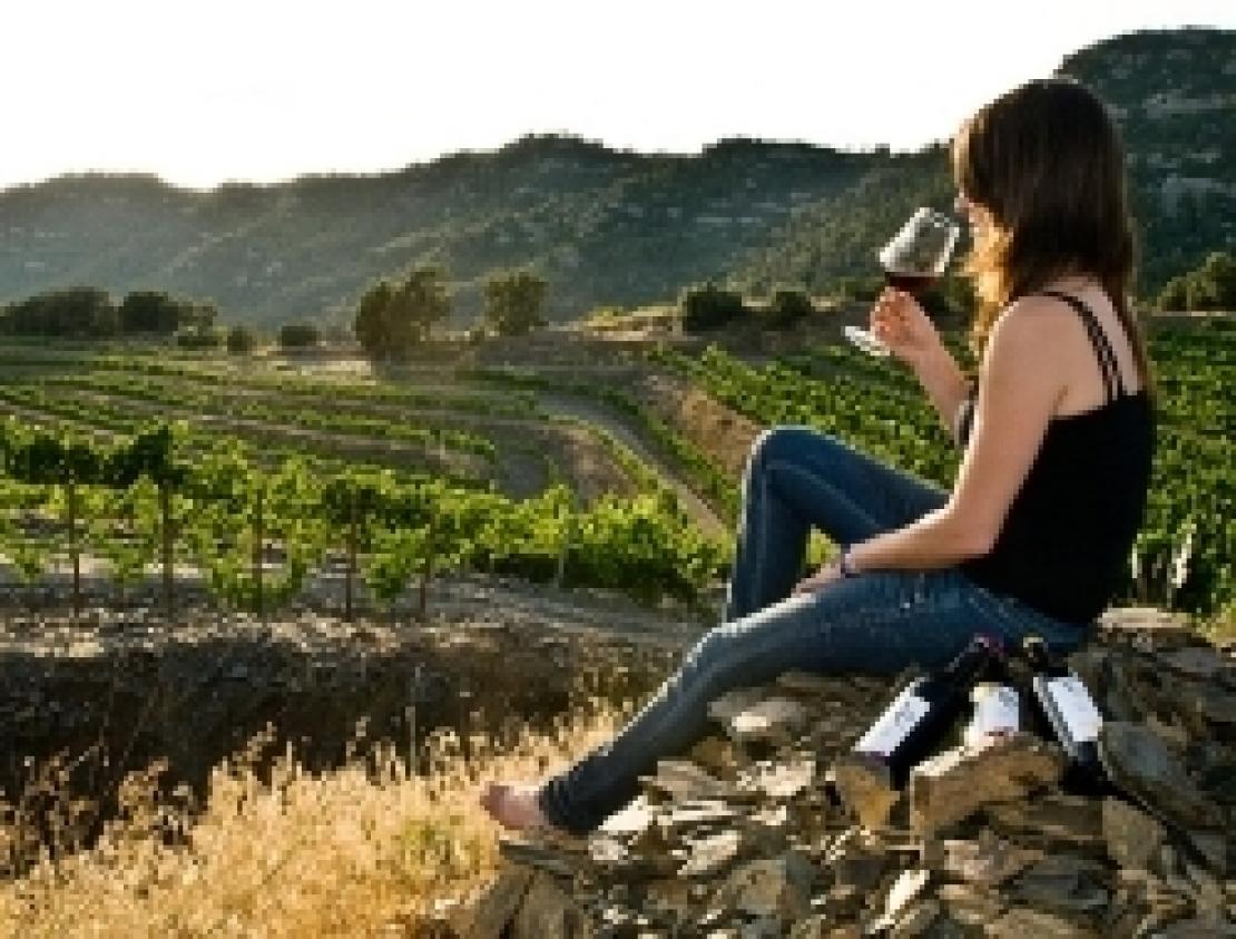 La legge sull'enoturismo, pietra tombale o rilancio per il Movimento Turismo del Vino