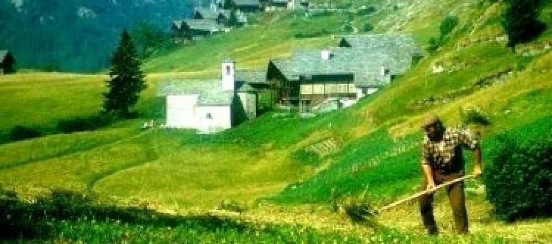 Le nuove opportunità per l'agricoltura di montagna