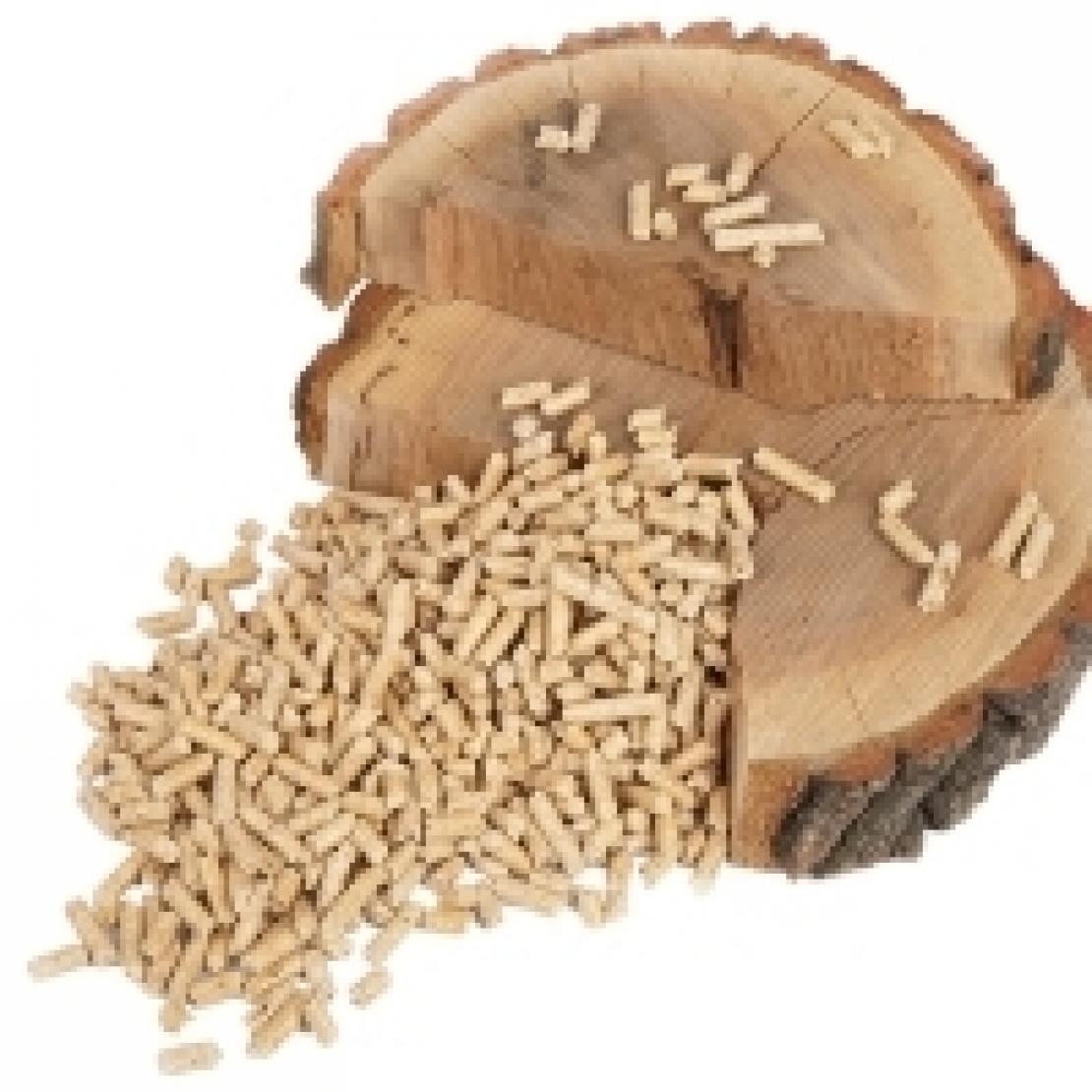 La caldaia a pellet fa bene all'ambiente