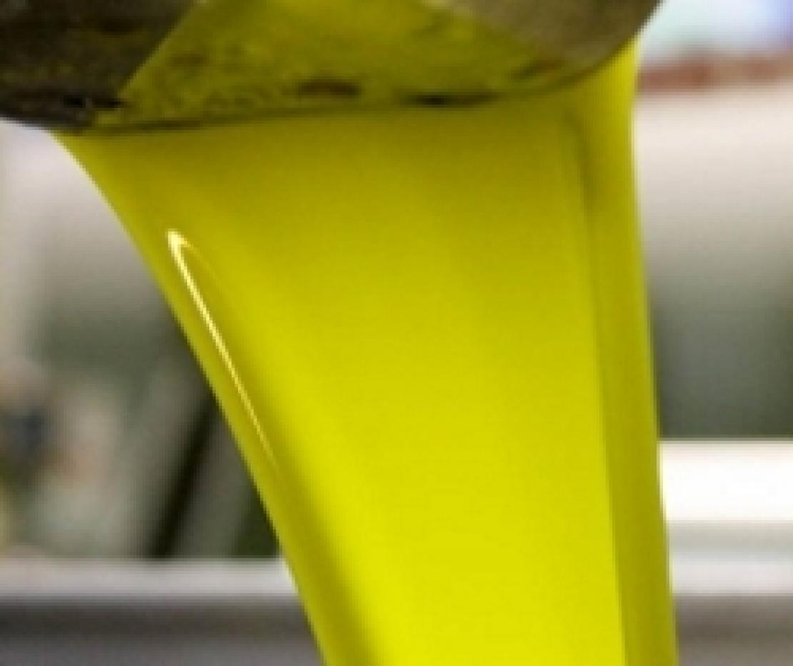 Ultrasuoni per l'estrazione dell'extra vergine di oliva: esame superato in quattro frantoi pugliesi