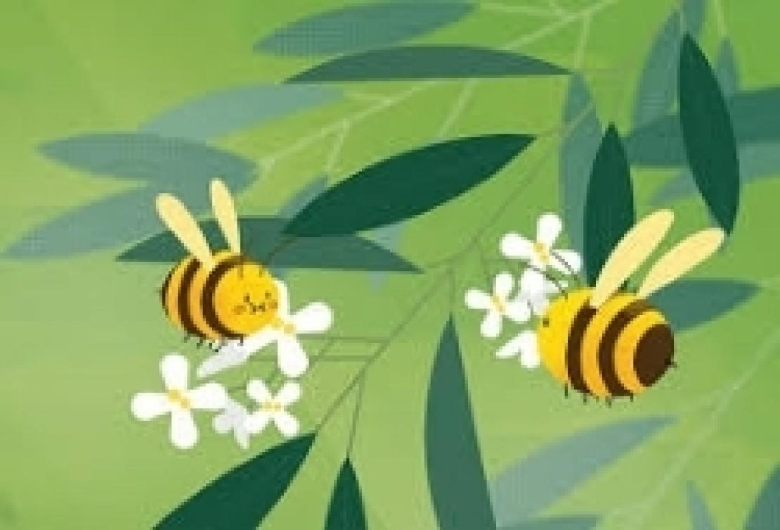 L'ultima fake news nel mondo dell'extra vergine d'oliva: le api fanno l'olio