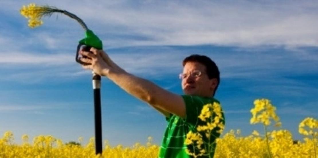 Nuovi incentivi per la produzione di biometano
