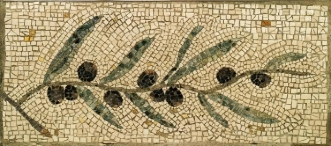 L'olio d'oliva, unico prodotto legato alla vita e alla morte
