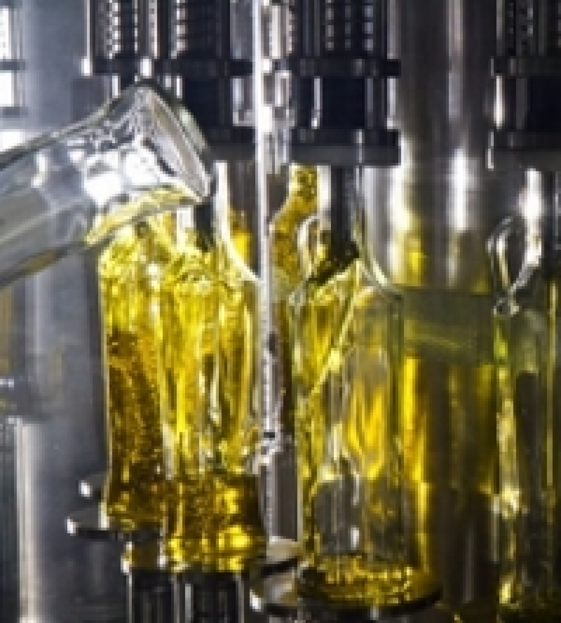 Dal Registro Sian all'etichetta parlante, un progetto per l'olio extra vergine di oliva italiano