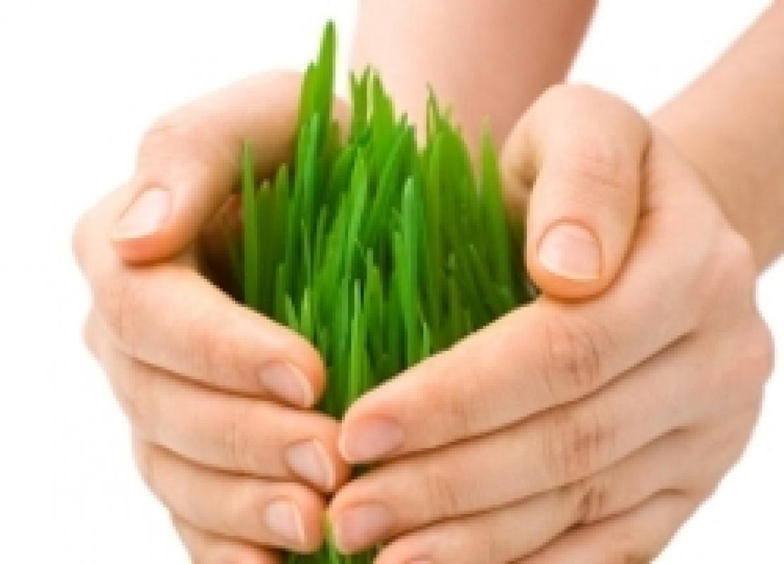 Le assicurazioni multi e plurischio tornano al centro della politica agricola
