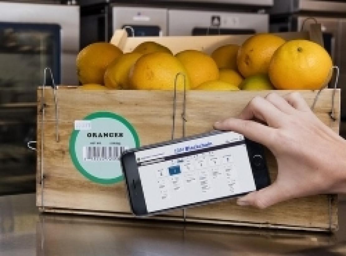 Il futuro dell'agroalimentare è fatto di dati: le blockchain non sono tutte uguali