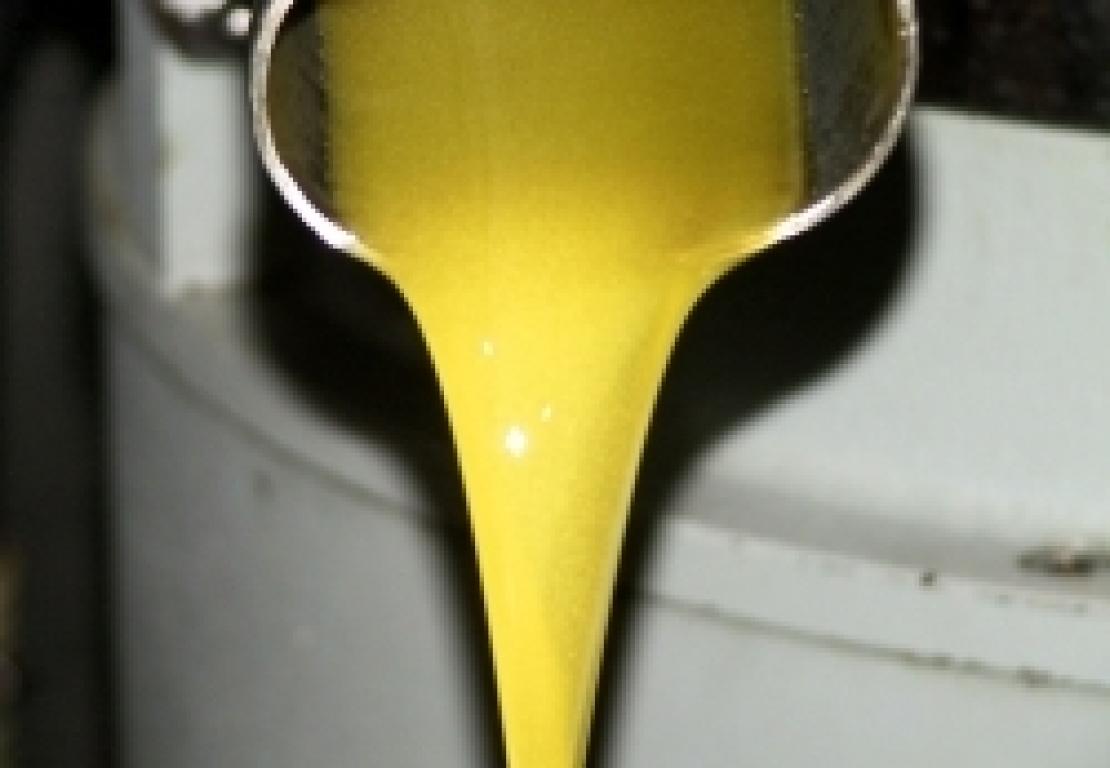 Ecco perchè si perde olio e resa durante l'estrazione con decanter