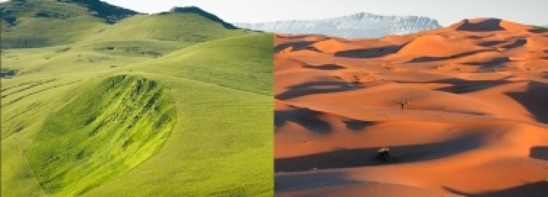 Il Sahara potrebbe tornare una florida pianura grazie ai parchi eolici e fotovoltaici