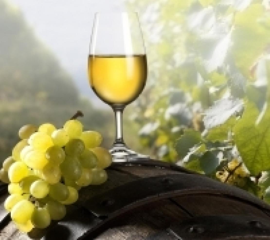 I vini bianchi italiani piacciono perchè autoctoni