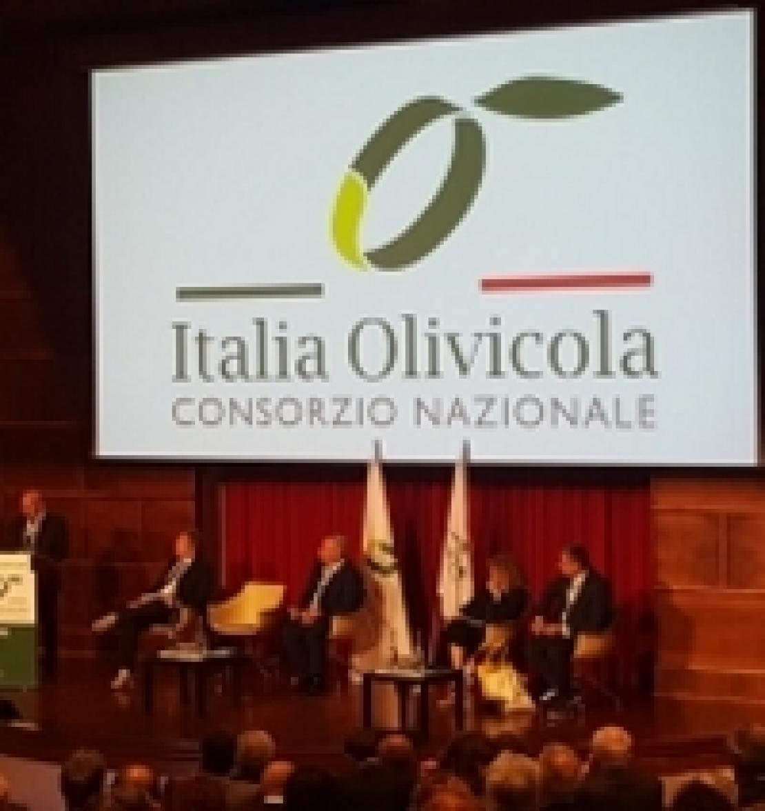 Italia Olivicola nasce per rivoluzionare il settore dell'olio d'oliva italiano