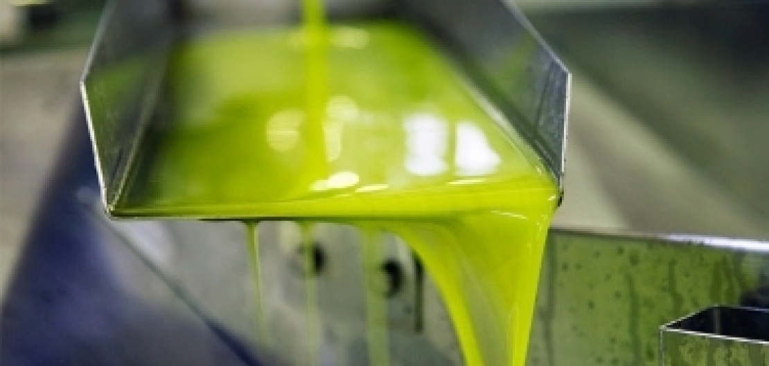 Le importazioni in Italia di olio d'oliva spagnolo valgono 1,5 miliardi di euro