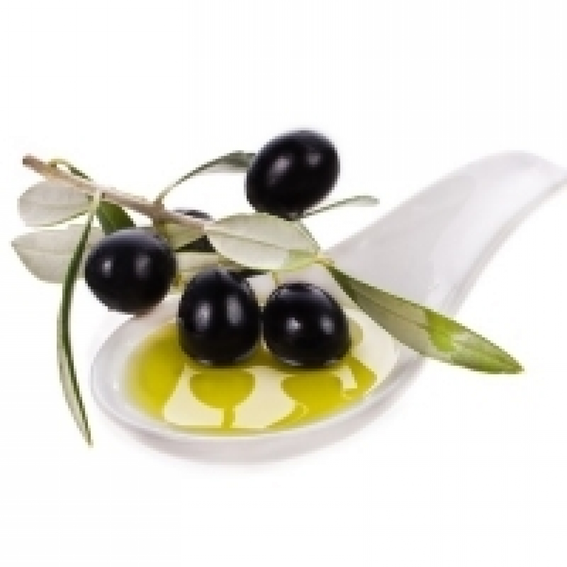 MeBiForum: per il mondo dell'olio dell'olio d'oliva che vuole correre e non rincorrere