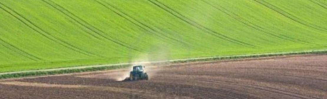 Il prezzo dei terreni agricoli torna a salire