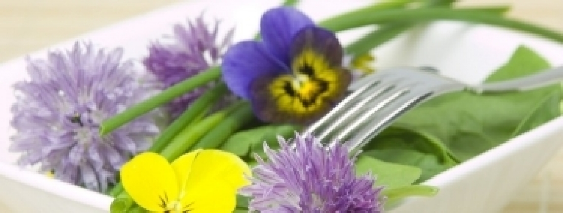 Il business agricolo del futuro: i fiori commestibili