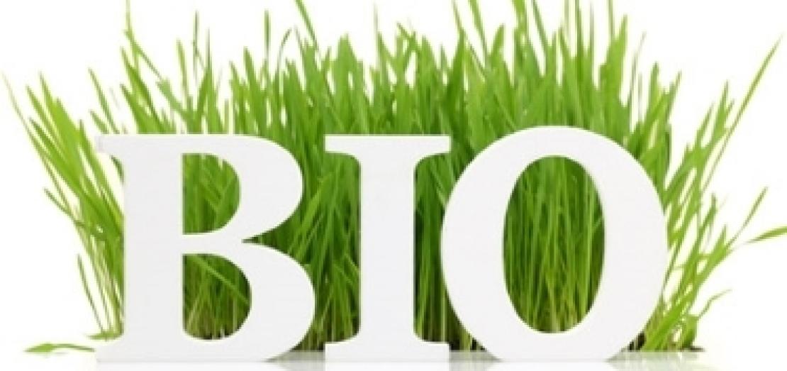 Approvata alla Camera la legge sull'agricoltura biologica