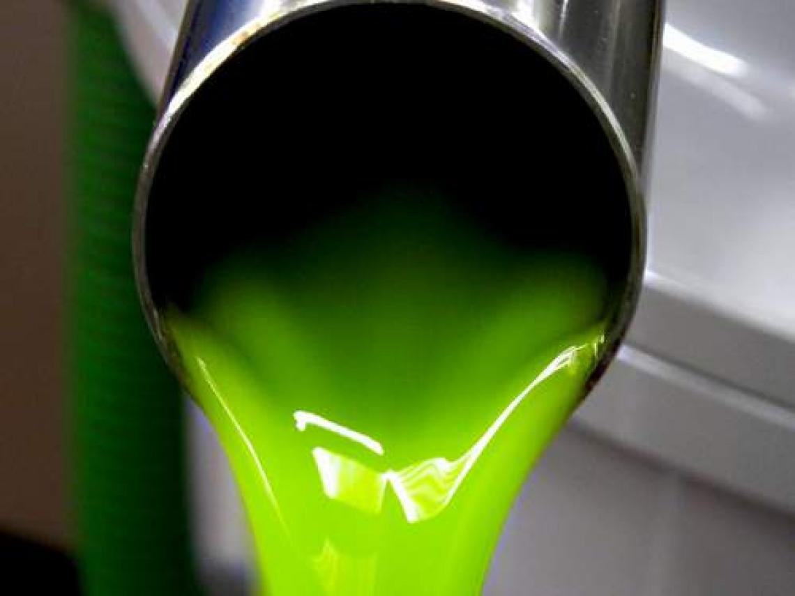 Ritorna la voglia di olio extra vergine d'oliva allo 0,5% di acidità