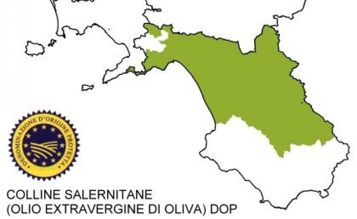 L'olio d'oliva Dop Colline Salernitane cerca il rilancio